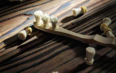 Siwak, Herbal Alami Pengganti Pasta Gigi